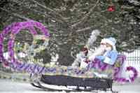 Копия-Сани-Деда-Мороза-22
